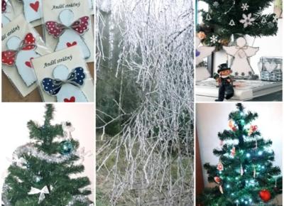 V Domě na půl cesty na vás  dýchne vánoční atmosféra